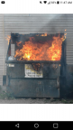 DumpsterFire's Avatar