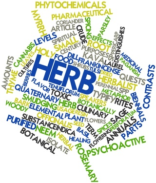 Word cloud for Herb